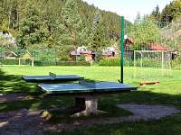 Chata Bozeňov - chata k pronájmu - 28 Dolní Bušínov