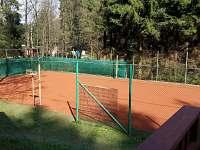 Chata Bozeňov - chata k pronájmu - 6 Dolní Bušínov
