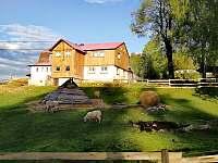 Chata U medvěda - chata - 44 Kořenov