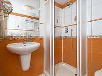 Koupelna - vila k pronajmutí Lázně Libverda