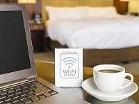 Wifi k dispozici - pronájem vily Lázně Libverda