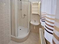 Vlastní koupelna s WC v pokoji č.4 - ubytování Držkov