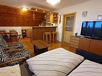 Obývací pokoj I - pronájem apartmánu Vysoké nad Jizerou