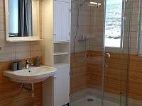 Koupelna - pronájem apartmánu Tanvald - Žďár