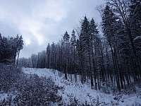 Ještědský hřbet v zimním kabátě - Kryštofovo Údolí