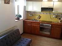 Apartman Desná - pronájem