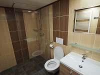 Koupelna - chata k pronajmutí Lázně Libverda