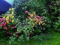 CHata dame mature zahrada - k pronajmutí Světlá pod Ještědem - Dolení Paseky