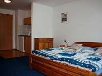 Čtyřlůžkový apartmán (dvoupokojový) - APA - pronájem Janov nad Nisou