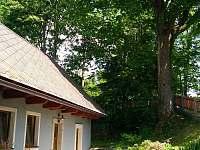 před chalupou - Oldřichov v Hájích