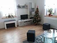 Apartmán Formanka - apartmán ubytování Liberec 14 - 5
