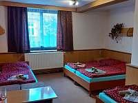 Penzion a restaurace U Dubu - penzion - 29 Tanvald