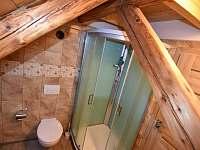 Koupelna 2 - chalupa k pronájmu Janovice v Podještědí
