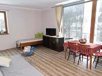 ubytování  v apartmánu na horách - Bedřichov