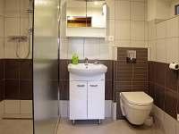 Sprchový kout, WC, přízemí - chata k pronajmutí Železný Brod