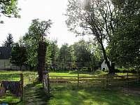 Zahrada - chalupa ubytování Ludvíkov pod Smrkem