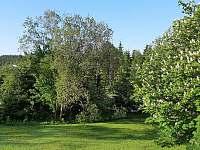 výhled do zahrady - Desná
