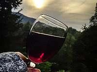 Pohled na víno - Šumburk nad Desnou