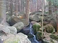 Cyklostezka lesem k sokolovně - chata k pronajmutí Janov nad Nisou - Malý Semerink