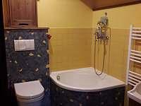 koupelna - chalupa k pronájmu Oldřichov v Hájích