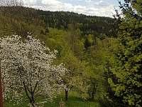vedle prolejzaček je velké ohniště s lavicemi - Český Šumburk