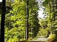 Chata Dáša - chata ubytování Příchovice - 9