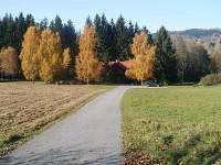 Chalupa na samotě u lesa - k pronájmu Rejdice