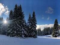 Mariánskohorské boudy - Albrechtice v Jizerských horách