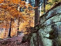 podzimní příroda - pronájem chalupy Albrechtice v Jizerských horách