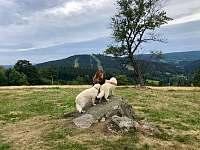 procházky po okolí - pronájem chalupy Albrechtice v Jizerských horách