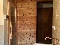 vstup do sauny - pronájem chalupy Albrechtice v Jizerských horách