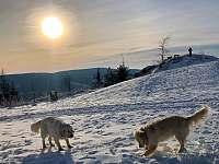 Zimní radovánky - Albrechtice v Jizerských horách