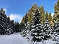 Zimní romantika - Albrechtice v Jizerských horách