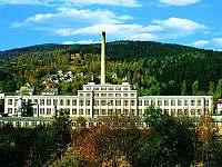Detoa Albrechtice- továrna na hračky a muzeum -