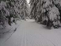 Běžkařské tratě v okolních lesích - Janov nad Nisou