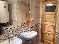 Koupelna 1 - pronájem chaty Albrechtice