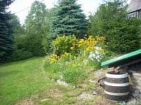 Zahrada - chata k pronájmu Albrechtice