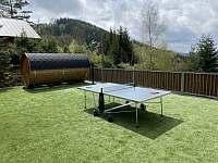 stolní tenis - Desná