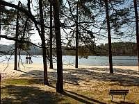 Pláž Hamr na Jezeře s bílý pískem - Křižany