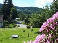 Zahrada - pronájem chalupy Polubný