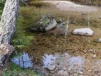pod chatou teče Kamenice - Albrechtice v Jizerských horách