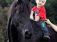 vyjížďky na koních - Hrabětice