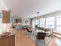 obývací pokoj s kuchyňským koutem - apartmán ubytování Liberec