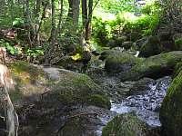 Potok na zahradě Rooubenka Javorka - chata k pronájmu Desná