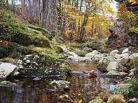 Tůňky v řece - chalupa ubytování Bílý Potok