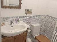 Koupelna přízemí - chalupa k pronajmutí Mariánská Hora