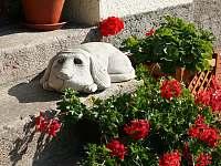 Kamenný pes