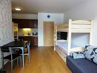 Apartmán - k pronajmutí Albrechtice