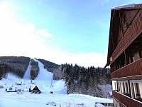 Apartmán na horách - zimní dovolená Albrechtice