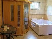 Wllness - apartmán ubytování Bedřichov